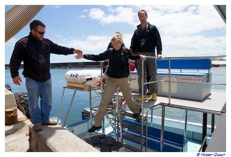 Abfahrt zum Ivanhoe Whale Trip
