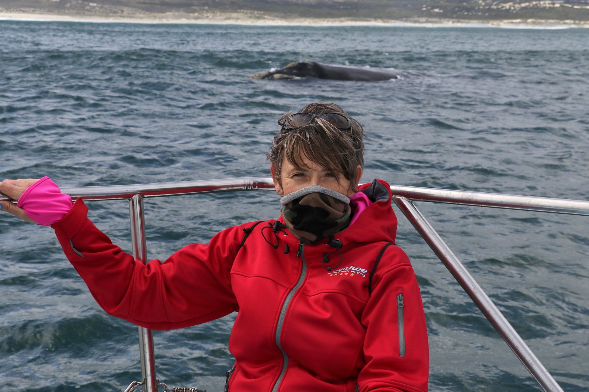 Enjoying the whales whilst staying safe.