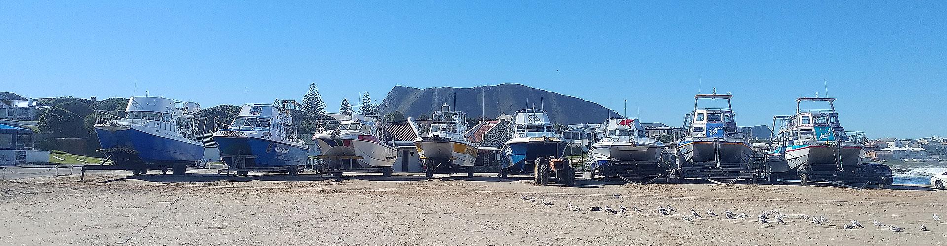 Kleinbaai harbour - shark boats